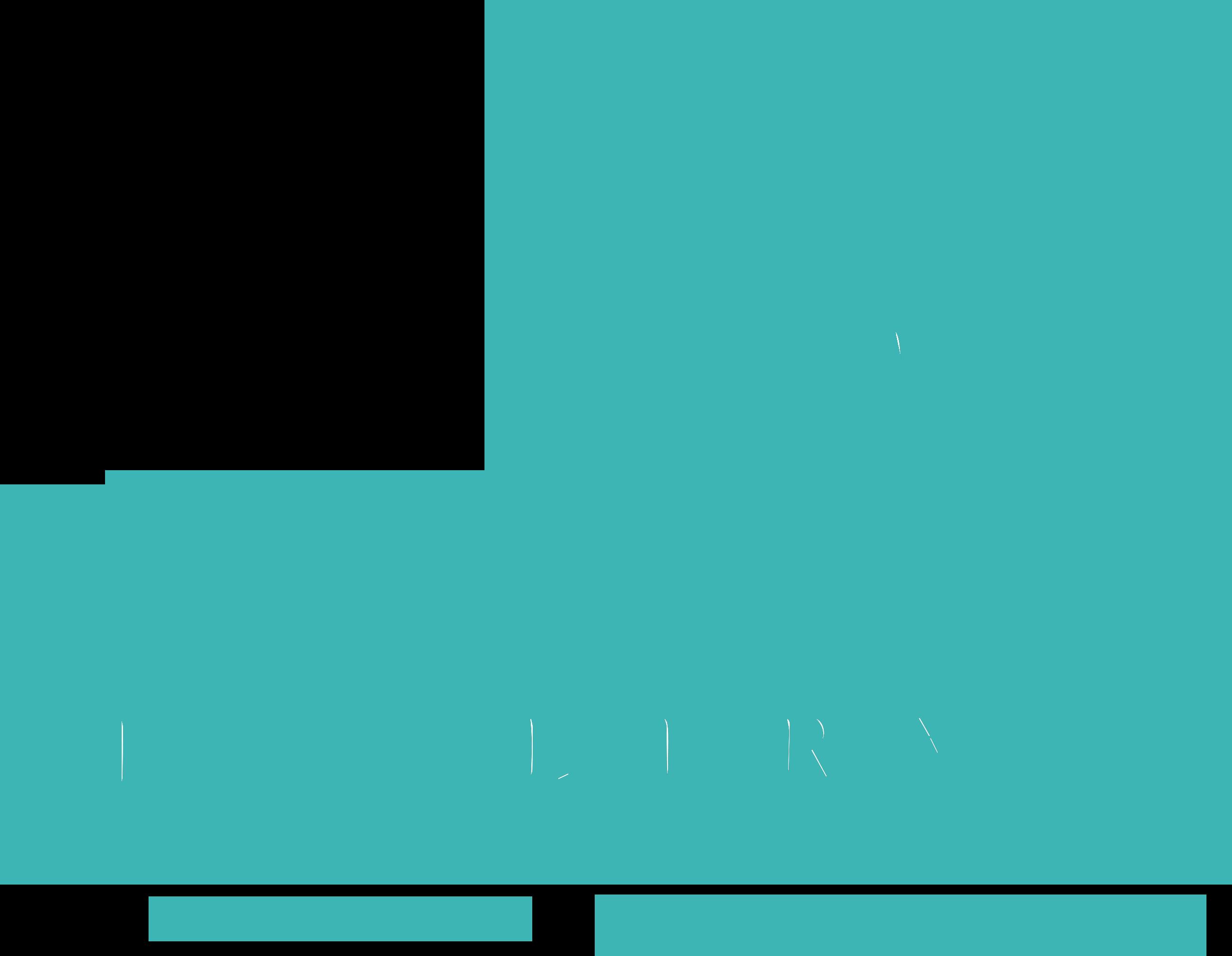 Cocoanut Jewelry